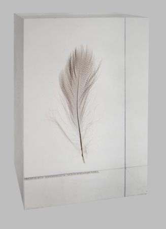 Shiro Kuramata - Floating Feather 1990
